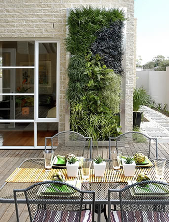 Living walls vertical gardens living roofs vertical for Living walls vertical gardens
