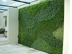 vertical gardens vertical landscape